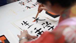 22ª Feira Japonesa do Recife neste domingo no Recife Antigo.